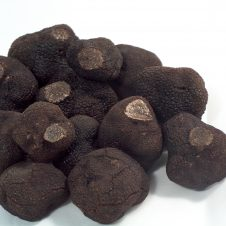 Tuber melanosporum fresca entera